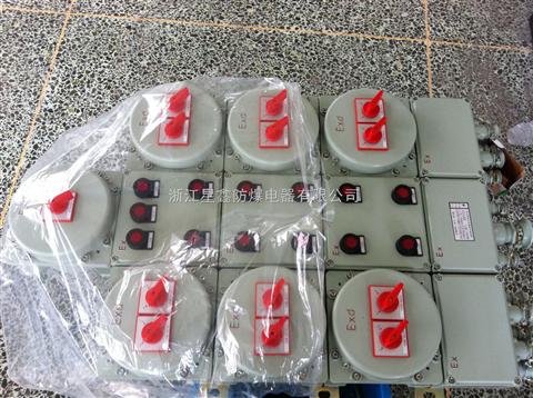 防爆照明配电箱BXM系列 IIC