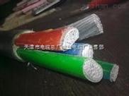 供應 ZA-YJLV22阻燃鋁芯電力電纜 天纜集團