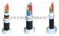 橡塑电缆厂YJV22高压电缆/YJV电力电缆价格