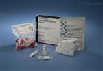 大鼠糖类抗原125(CA125)elisa检测试剂盒