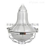 FGL-L/100铸铝材质防水防尘防腐照明灯