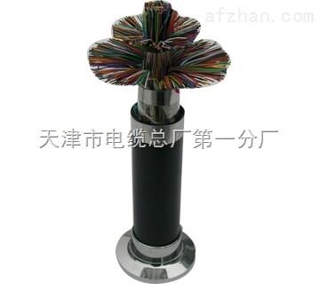 供应hya大对数通信电缆结构