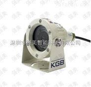 防爆微型红外网络高清摄像仪