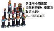 0.6/1KV动力电缆VV动力电缆YJV交联电缆生产厂家