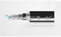 A05VV-U 电缆(特种电缆生产厂家)
