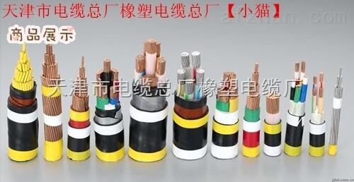 专业生产软芯电缆RVV RVVP 11*10 仪表设备用线缆
