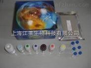 鱼Immunuglobulin Ig ELISA试剂盒现货热销