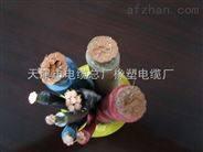 YC/YCW 750V重型橡套软电缆/厂家报价《矿用橡胶电缆》