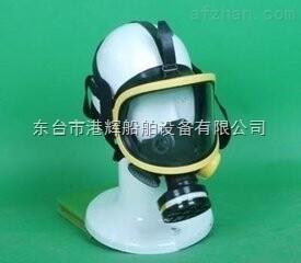 优质全面罩防毒面具厂家