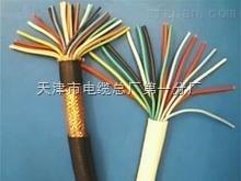 计算机电缆:DJVV(R)P2-22,DJVP2V(R)