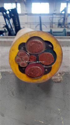 MCP-0.38/0.66KV屏蔽煤矿采煤机电缆 (国标保检测)