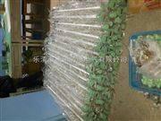 防爆日光灯BPY-R防爆日光灯产品图片