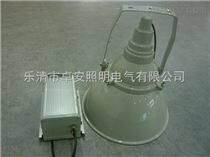 NTC9200防震型超强投光灯价格