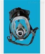 防毒防護全面具