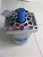 长源齿轮泵CBN-F563-BFH