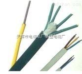 咨询 铁路信号电缆PTYY19*1.0每米价格