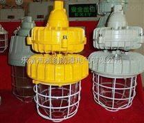 CCD93隔爆型防爆无极灯,高频防爆灯