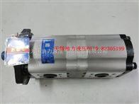 长源双联泵CBTL-F416/F416-AFP
