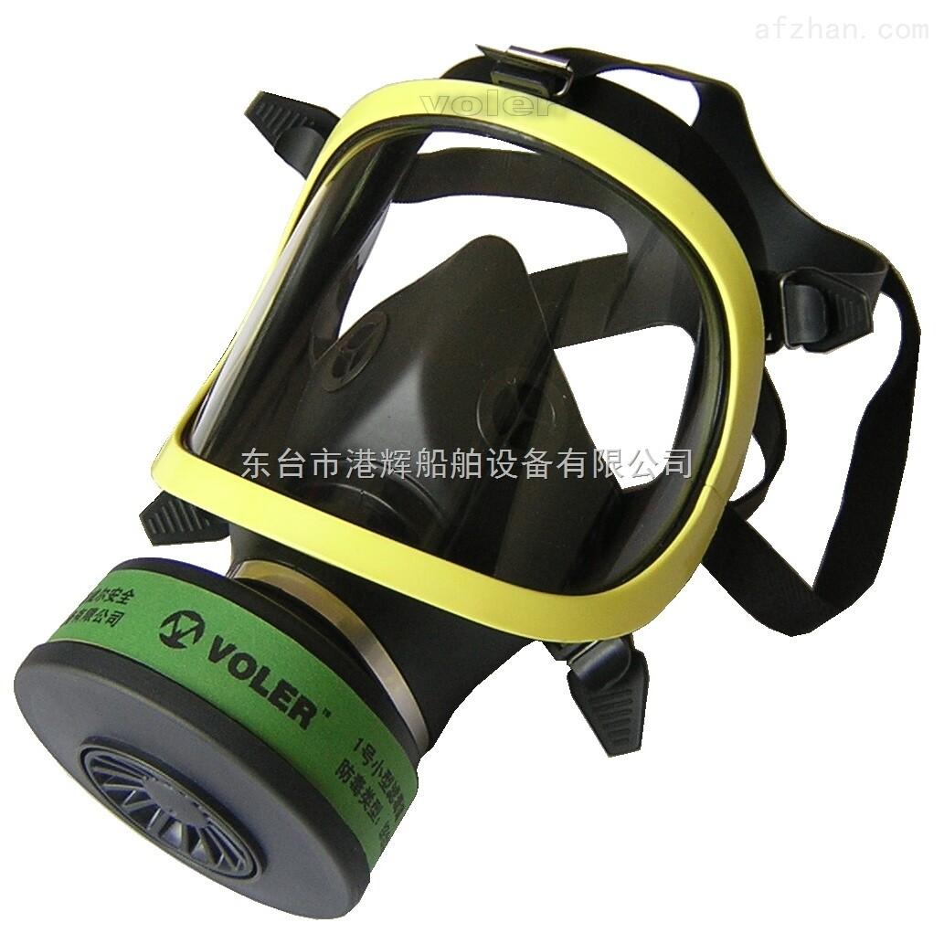 全面罩防毒面具哪有的卖