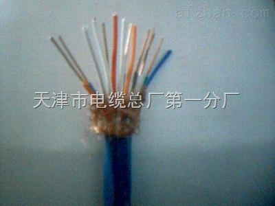 低烟无卤阻燃型计算机电缆WDZ-DJYYP WDZ-DJYVP
