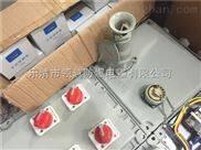 防爆检修箱BXX51-2/80K100DXG