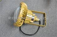 哈尔滨GB144-80W圆形LED防爆灯报价