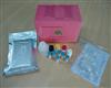 大鼠睫状神经营养因子(CNTF)ELISA试剂盒