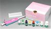 綿羊主要組織相容性復合體(MHC)ELISA試劑盒
