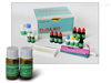 人着si粒蛋白B(CENP-B)ELISAshi剂盒