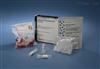 da鼠you离甲状腺激素(FT4)elisajian测试剂盒